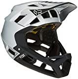 Cheap Fox Racing Proframe Helmet Black/Silver, M