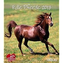Edle Pferde 2013