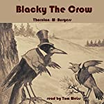 Blacky the Crow | Thornton W. Burgess