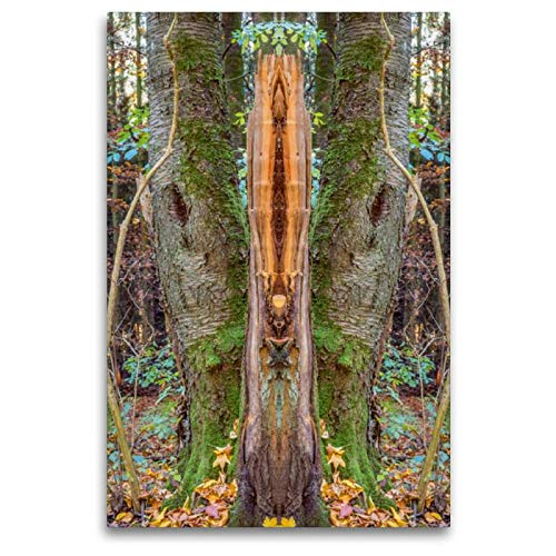 CALVENDO Art Toile Murale décorative en Tissu Motif Totem 80 x 120 cm