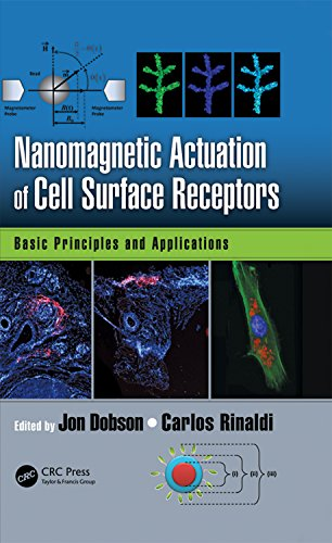 (Nanomagnetic Actuation in Biomedicine: Basic Principles and Applications)