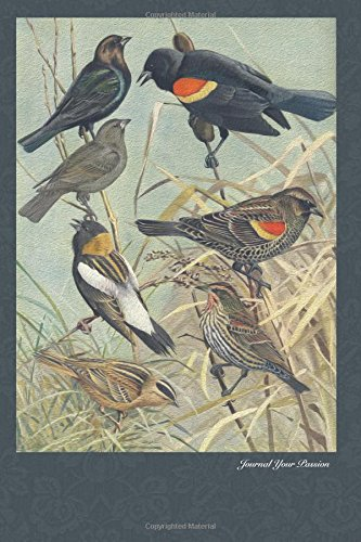 Read Online Journal Your Passion: Bird Lovers Series, Blackbirds (Journal for writing, diary, notebook, journal for drawing, idea book) (Volume 9) PDF