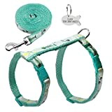 Nylon Cat Puppy Harness Leash Lead Set Adjustable Harnesses Gift ID Tag Blue Chest 23 to 38cm