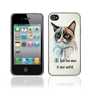 CQ Tech Phone Accessory: Carcasa Trasera Rigida Aluminio PARA Apple iPhone 4 4S - Funny Grumpy Cat Painting