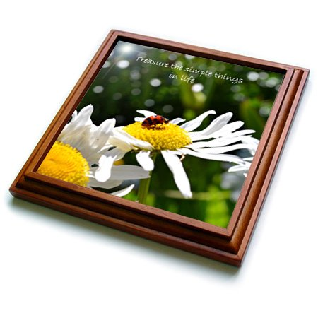 3dRose trv_23507_1 Treasure Simple Things Ladybug Trivet with Ceramic Tile, 8 by 8