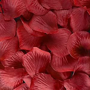 Super Z Outlet Silk Fabric Flower Mini Rose Petals for Weddings (1000 Pieces) (Red) 16