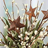 Factory Direct Craft Group of 4 Cream Pip Berry and Rusty Star Floral Picks with Whispy Accents