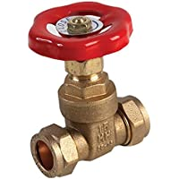 PIKE /& CO/® PKE42623 VPG PUMP VALVE GATE TYPE 22MM w//min 3yr Warranty QTY:2