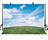 Natural Photography Backdrops 10 X 7 FT Green Grassland Photography Backdrop White Clouds and Blue Sky Background for Photo Booth Screen Backdrop or YouTube Background Props ST170055