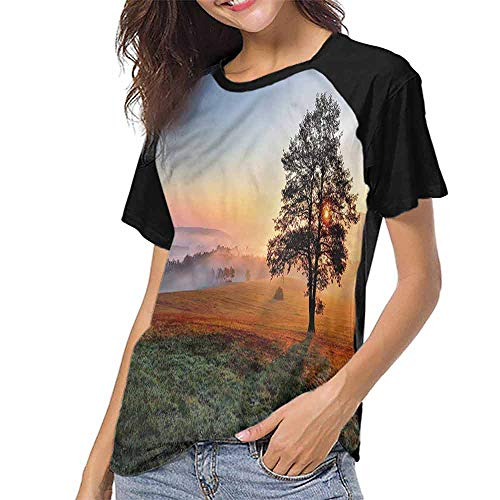 Female Tops,Landscape,Meadow Dramatic Sunset S-XXL Women's Short Sleeve Tops ()