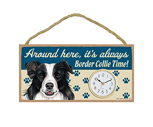 SJT ENTERPRISES, INC. Around here, It's Always Border Collie time 5