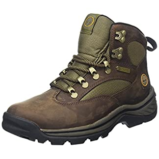 Timberland Women's Chocorua Trail Mid Gore-tex Ankle Boots 5