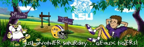 LSU Tigers Louisiana State Wall Mural Kids Wall Graphics 4' x 12' by Sport Walls