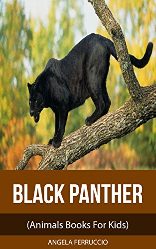 Black Panthers (Animals Books For Kids)