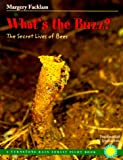 Front cover for the book What's the Buzz?: The Secret Lives of Bees (Rain Forest Pilot) (Rain Forest Pilot) by Margery Facklam
