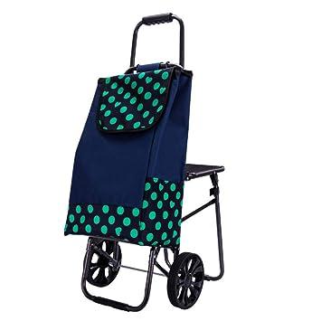Amazon.com: Carro de la compra portátil plegable con silla ...