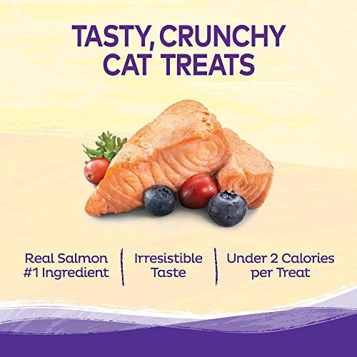 Wellness Kittles Natural Grain Free Cat Treats, Salmon & Cranberries, 2-Ounce Bag by Wellness Natural Pet Food (Image #5)