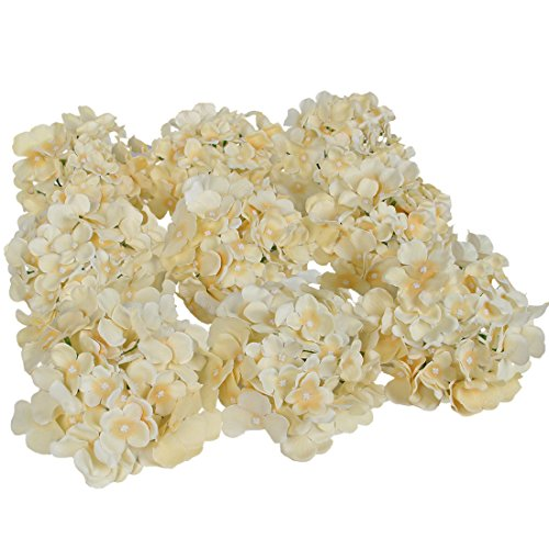 Luyue Silk Hydrangea Heads Artificial Decoration Flowers Garden Floral Decor,Pack of 10 (Champagne) (Hydrangea Hat)