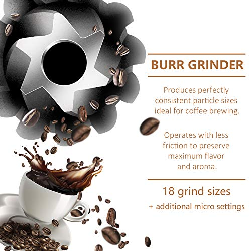 Grind & Brew Automatic Coffeemaker Barsetto Digital Programmalbe Drip Coffee Machine Brewer for Kitchen and Office by Barsetto (Image #3)