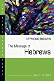The Message of Hebrews : Christ above All (The Bible Speaks Today)