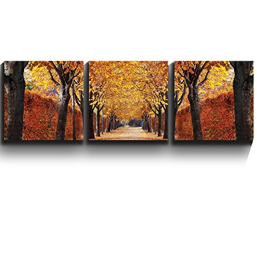 3 Square Panels Contemporary Art Yellow leaved trees line autumn lane Three Gallery ped Printed Piece x 3 Panels