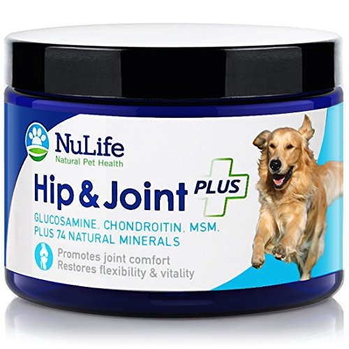 Glucosamine Chondroitin for Dogs with MSM & Organic Coral Calcium - Hip and Joint Supplement for Arthritis Pain Relief and Improved Mobility - 6oz Powder