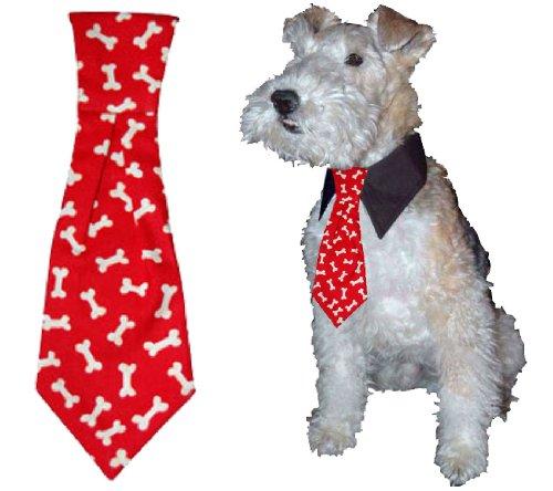 Calvin K-nine Necktie (Red, L) 12″ Long, My Pet Supplies