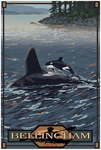 Bellingham Washington Baby Orca Jumping Travel Art Print Poster by Mike Rangner (24