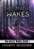 The Magic Wakes