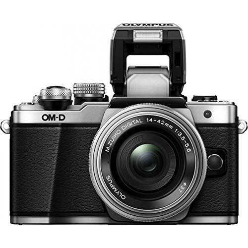 expert-shield-the-screen-protector-for-olympus-e-m10-mark-ii-crystal-clear