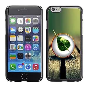 Caucho caso de Shell duro de la cubierta de accesorios de protección BY RAYDREAMMM - Apple iPhone 6 Plus 5.5 - Cool Nature Wood Leaf Tree