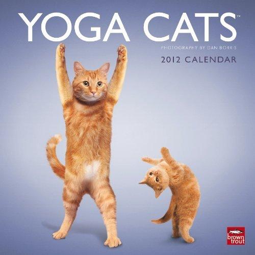 Yoga Cats & Yoga Kittens 2012 Square 12X12 Wall Calendar ...