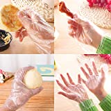 50pcs/100pcs Disposable Clear PE Plastic Gloves for Safe Home Food Service Cleaning Gloves (100pc_1)
