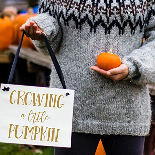 Fall Pregnancy Announcement Growing A Little Pumpkin | Thanksgiving Season Holiday Baby Reveal -