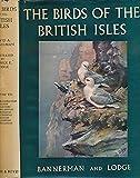 : The Birds of the British Isles. Volume 8. Phalacrocoracidae; Diomedeidae; Sulidae; Podicipedidae; Fregatidae; Gaviidae; Procellariidae; Columbidae; Pteroclididae