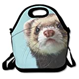 Alphabetical Ferret Insulated Neoprene Lunch Bag Thermal Carrying Gourmet Lunch Box Containers