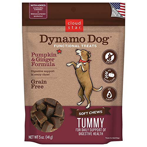 Cloud Star Dynamo Dog Digestive Support Soft Chew Treats, Grain Free with Pumpkin, Ginger, & Probiotics