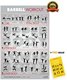 Alpine Fitness Barbell Exercise & Fitness Poster | Laminated Gym Planner for a Great Workout - Guide to Build Muscle & Strength
