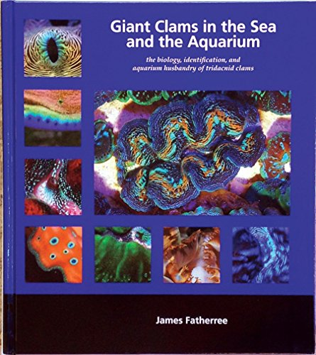 Giant Clams in the Sea and the Aquarium by Brand: Liquid Medium