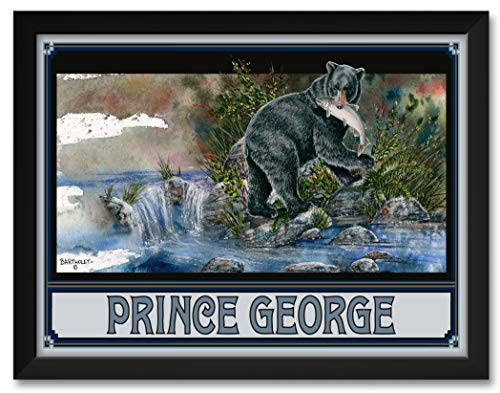 (Blackie Bear Prince George British Columbia Canada Framed Art Print by Dave Bartholet. Print Size: 18