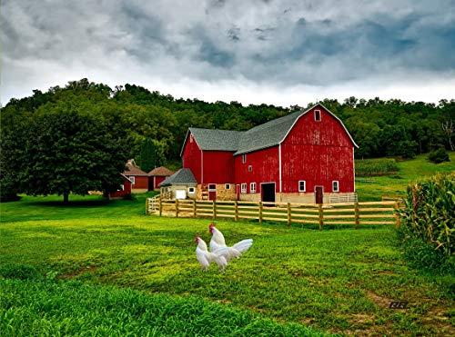 Farm Red Barn Kitchen Glass Cutting Board Barn Decorative Gift Farmhouse Ranch Piglets Design