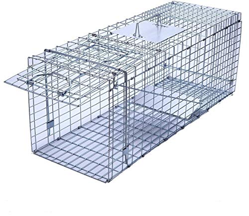 "Trapro Large Collapsible Humane Live Animal Cage Trap for Raccoon, Opossum, Stray Cat, Rabbit, Groundhog and Armadillo - 32"" x 11"" x 13"""
