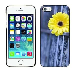 [Neutron-Star] Snap-on Series Teléfono Carcasa Funda Case Caso para iPhone 5 / 5S [Daisy Cerca Metáfora Significado Profundo]
