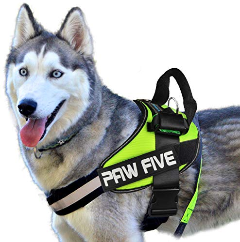 Paw Five CORE-1 No-Pull Easy Walk Reflective Dog Harness with Built-in Waste Bag Dispenser Adjustable Padded Control for Medium and Large Dogs, Check Sizing Chart Before Ordering (Medium, Leaf Green)