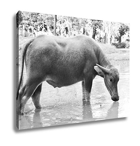 Ashley Canvas Thai Buffalo Walk Over The Field Go Back Home With Waters And Sunset, Wall Art Home Decor, Ready to Hang, Black/White, 16x20, AG6343606 by Ashley Canvas