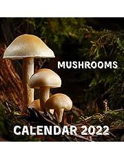 Mushrooms Calendar 2022: September 2021 - December 2022 Monthly Planner Mini Calendar With Inspirational Quotes