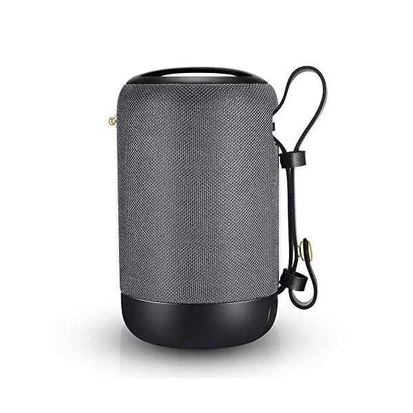 Enceinte Bluetooth Portable, 20W Haut-Parleur Bluetooth sans Fil avec autonomie de 12 Heures, Pilote Double, Basses Puissantes, Mains Libres Téléphone, Carte TF Support, Microphone et Chargement USB 1