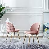 Velvet Pink Living Room Chairs, Vanity Chairs