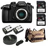 Panasonic GH5 Lumix 4K Mirrorless Camera w/Hard Case & 2 X 32 GB UHS-II SD Card Bundle + Havana 21 Bag