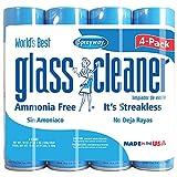Sprayway Glass Cleaner Aerosol Spray, 19 oz (19 oz)
